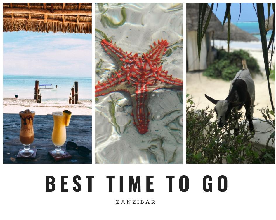 Go to Zanzibar