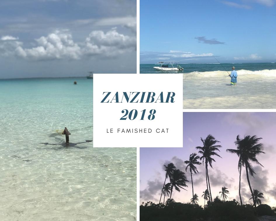 How To Go To Zanzibar 35