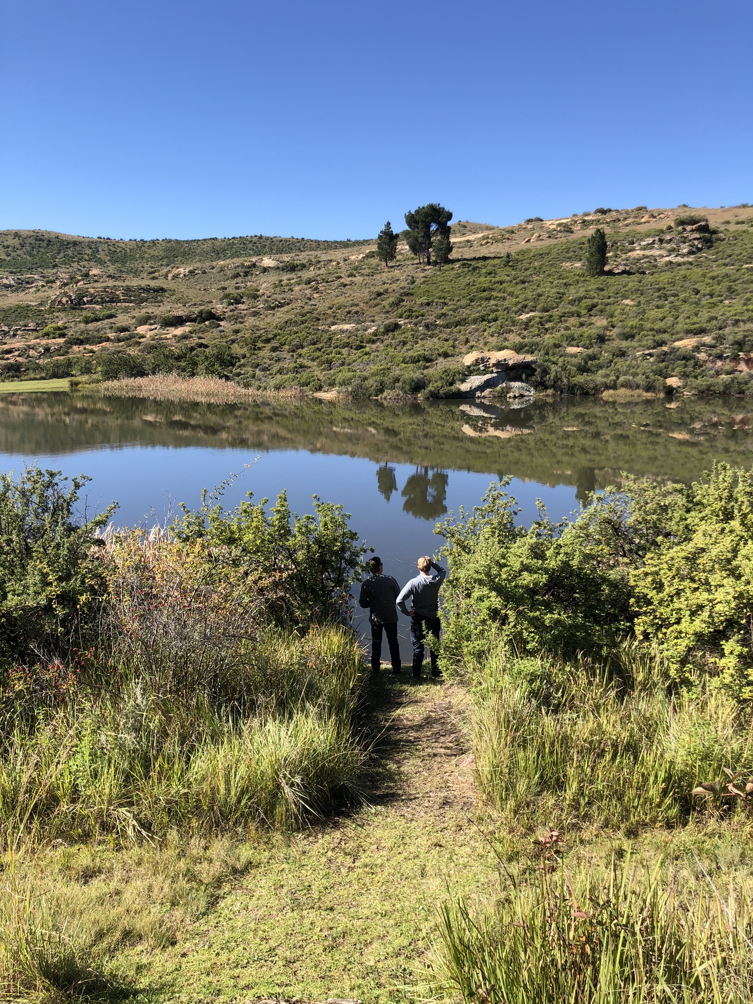 What to do in Clarens Free State 65